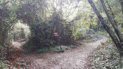 Indicator Panaguda, la Muntele Athos