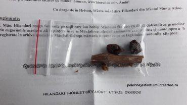 Bobite de struguri de la Mănăstirea Hilandar
