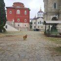 pelerinaj la Muntele Athos şi Salonic în 4-9 februarie 2019